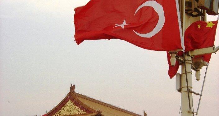 土耳其总统去中国求助