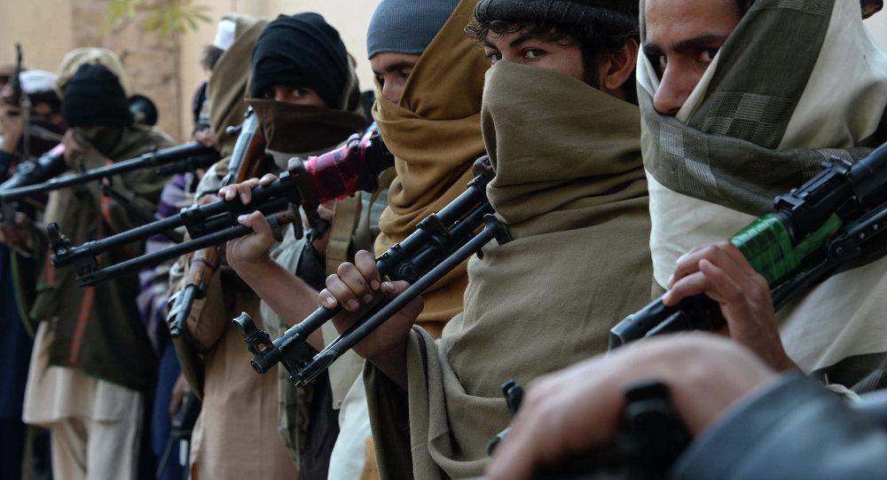 阿富汗议会:我们的军队与国际力量不同,不会在与塔利班分子的斗争中退缩