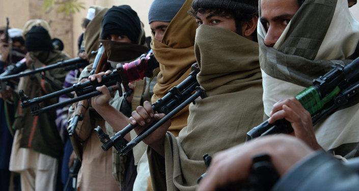 阿富汗和中亚地区局势恶化迫使俄罗斯作出反应