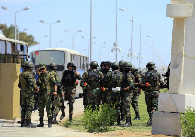 埃及政府軍7月在西奈半島北部消滅88名武裝分子
