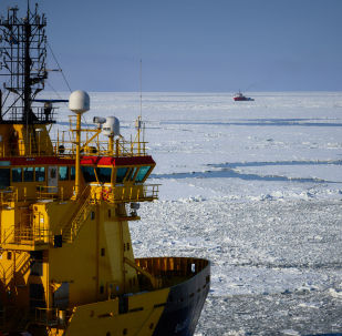 专家:外国公司关注北极开发具有政治特点