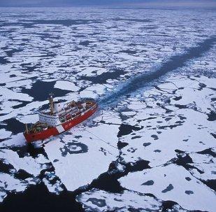 俄核動力破冰船公司:北方海路破冰船航行次數將進一步增加