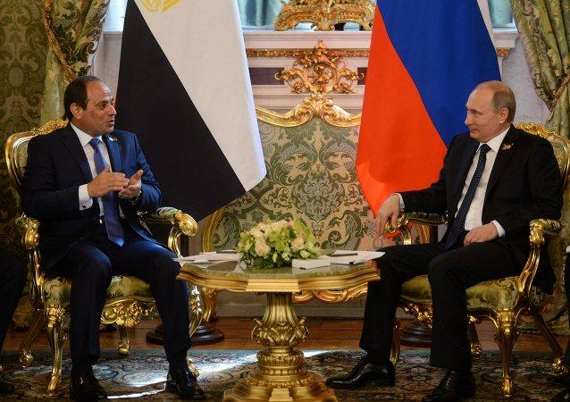 埃及外長:埃及相信A321空難不會影響埃俄關係
