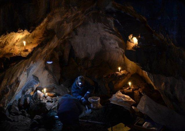在巴什基里亚发现巨大的穴居时代狮子遗骨