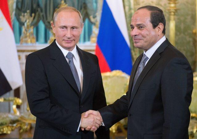 普京:俄計劃加大對埃及糧食出口