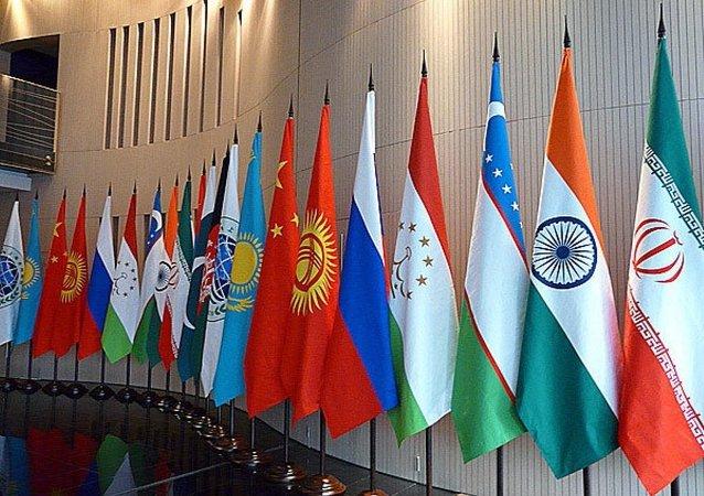 白俄不排除提出加入上合組織的可能