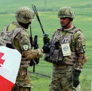 北约峰会确认格鲁吉亚未来将加入该组织