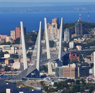 克宫证实普京支持将远东联邦区行政中心迁往符拉迪沃斯托克