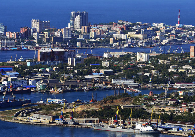 俄遠東發展部:約七成對遠東投資流向出口企業