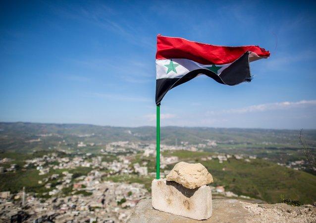 美国务院:美国支持就叙利亚第三个冲突降级区达成的协议