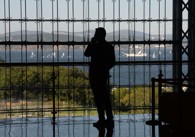 俄远东发展部与经济发展部研究在俄罗斯岛设立离岸金融中心问题