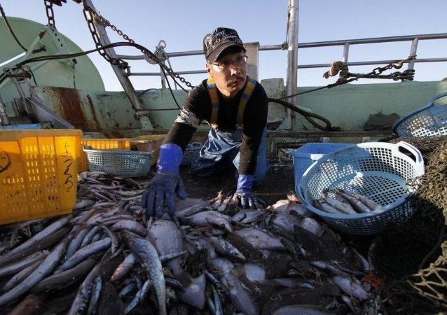 俄外交部稱,俄方認為,與美國間有關打擊非法海洋捕撈的協議體現了開展務實互動的意願。