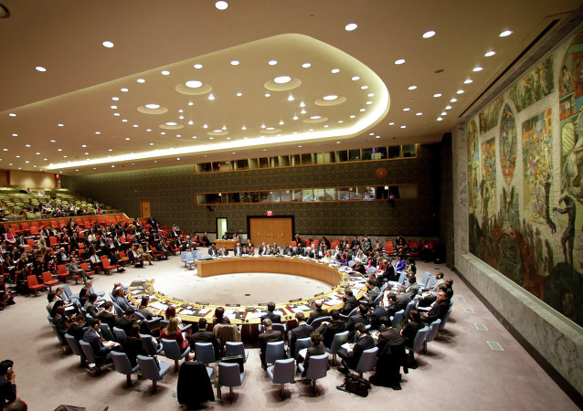 俄外交部, 將支持能夠獲得多數成員國贊成的聯合國安理會改革方案