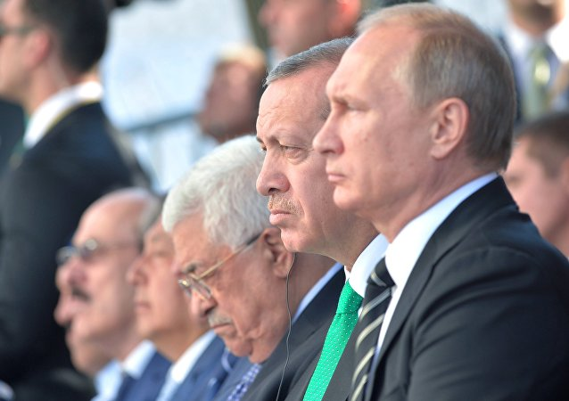 普京确认愿与土耳其合作打击恐怖威胁