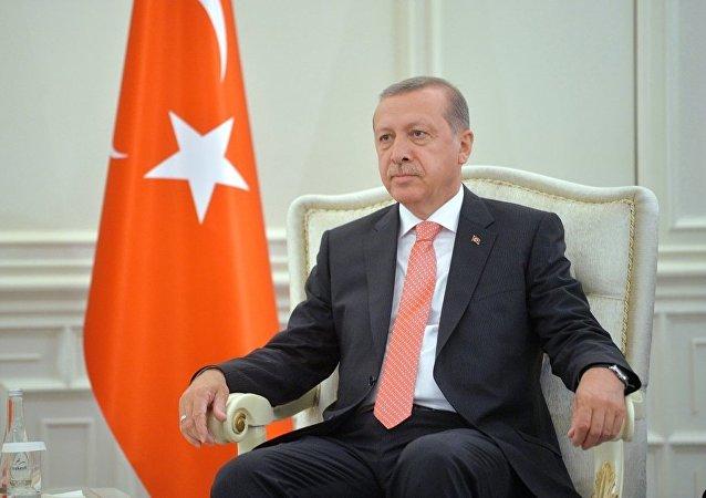 耳其总统埃尔多安