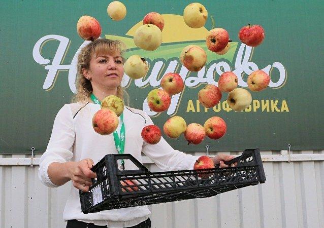 俄商业监察员:俄企可向中国出口生态食品与建材