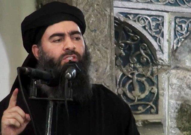 「伊斯蘭國」賊首巴格達迪