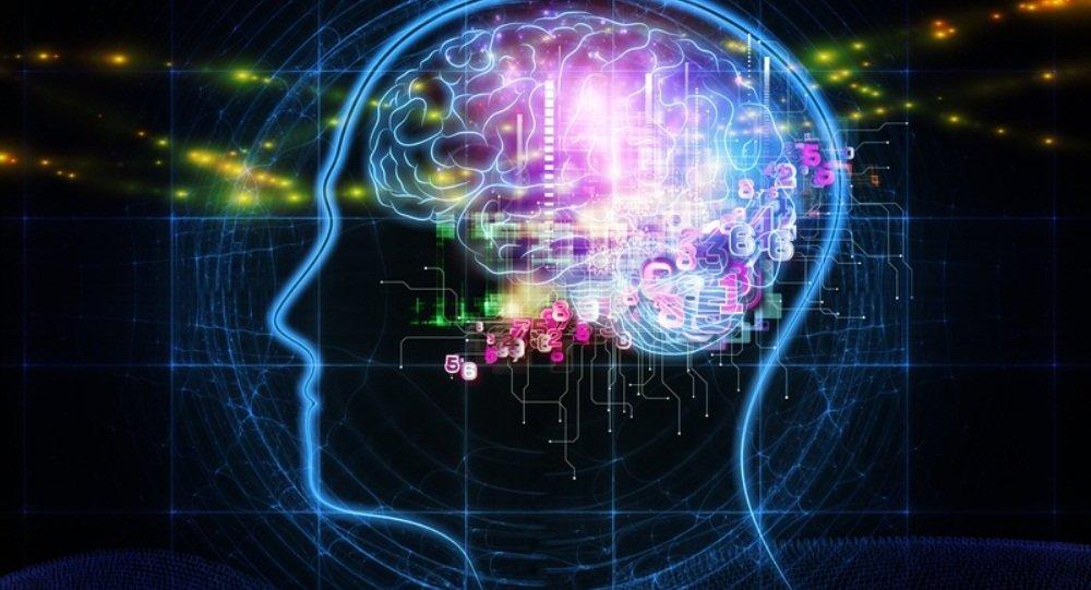 科学家介绍如何延缓大脑衰老
