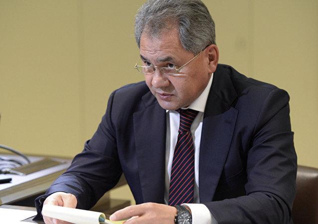 俄国防部:俄埃两国防长通电商讨军事合作