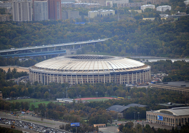 """莫斯科""""卢日尼基""""体育场"""