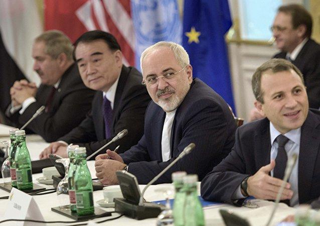維也納會議是政治解決敘利亞危機的重要努力