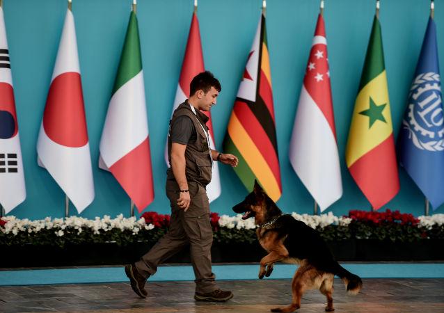 媒體:護衛漢堡G20峰會外國代表團的工作人員將可持有武器