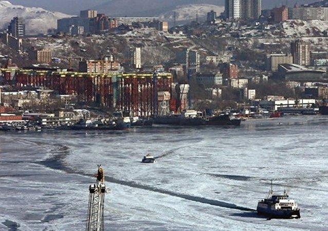 绥芬河市将加强与俄罗斯符拉迪沃斯托克港对接合作