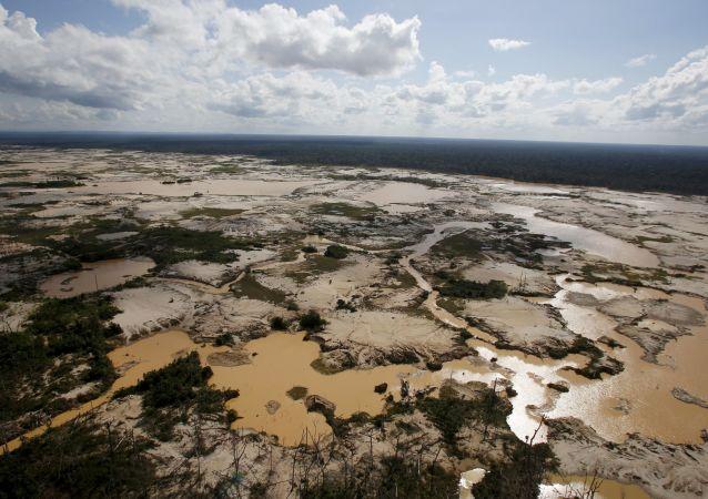 亞馬孫流域地區的森林砍伐
