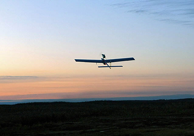 在叙击落17架由发达国家协助制造的恐怖分子无人机