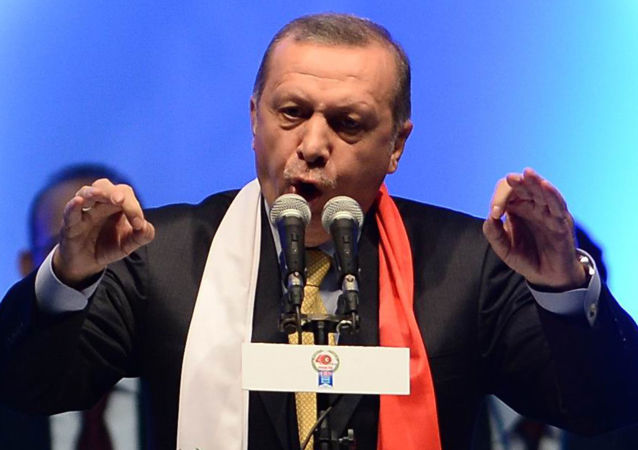 """土耳其总统称不会放弃""""阿库尤""""核电站建设"""