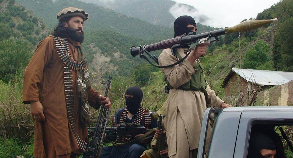 塔利班武装分子
