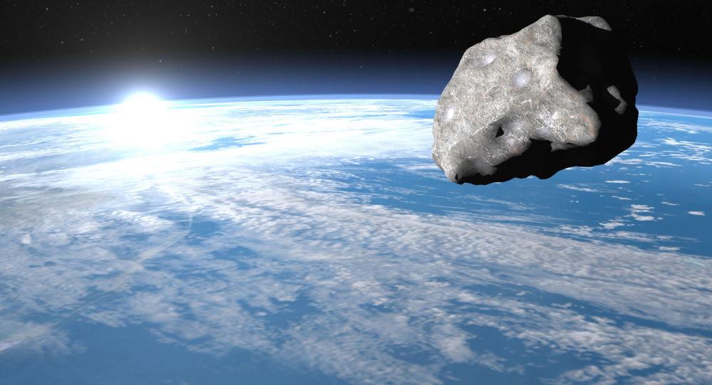 日本研究人员:恐龙灭绝纯属偶然