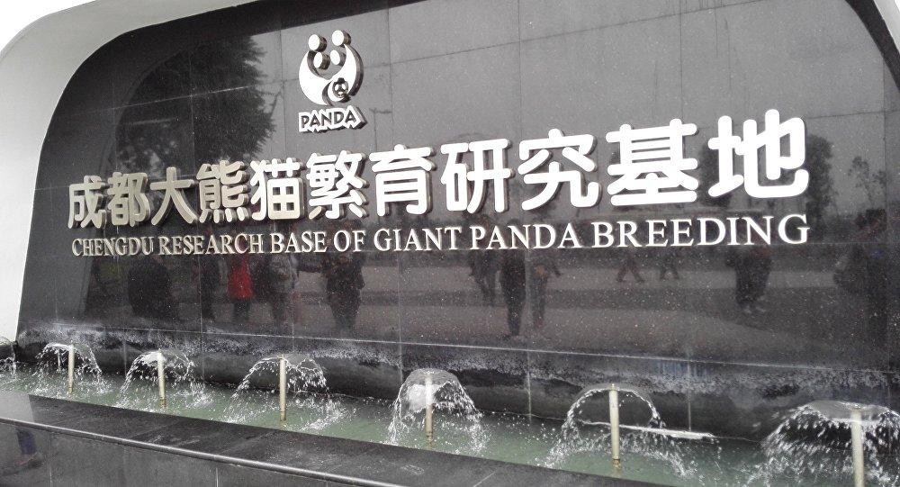 成都大熊貓保護區