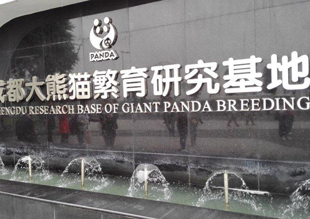 成都大熊猫保护区