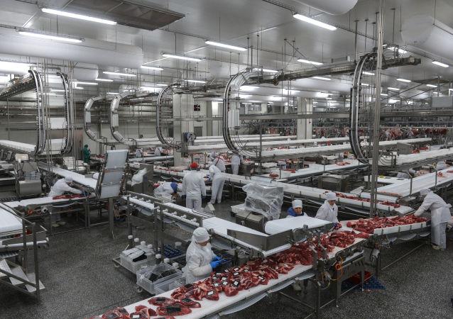 米拉托格公司總裁:俄對華出口肉類只是時間問題