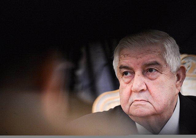 敘利亞外長承諾將懲罰那些未經大馬士革同意而出兵敘利亞的力量