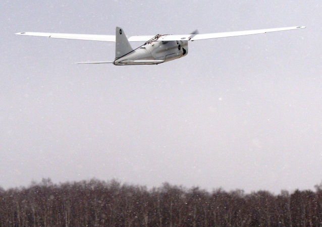 海雕-10(ORLAN-10)