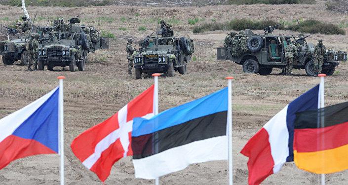 民调:多数法国人支持建立欧洲军队