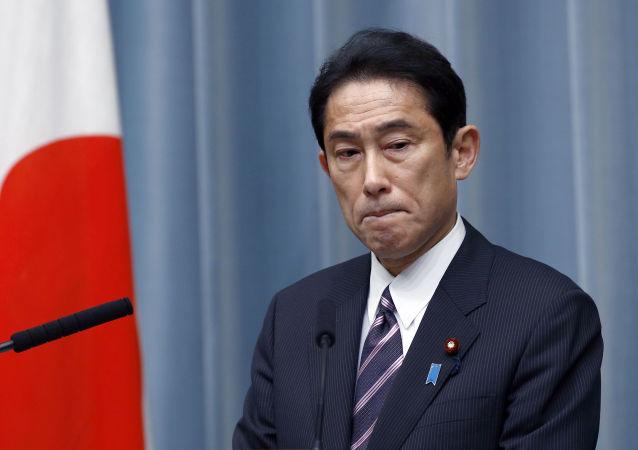日本外相:沒有核大國的禁核武條約談判不現實