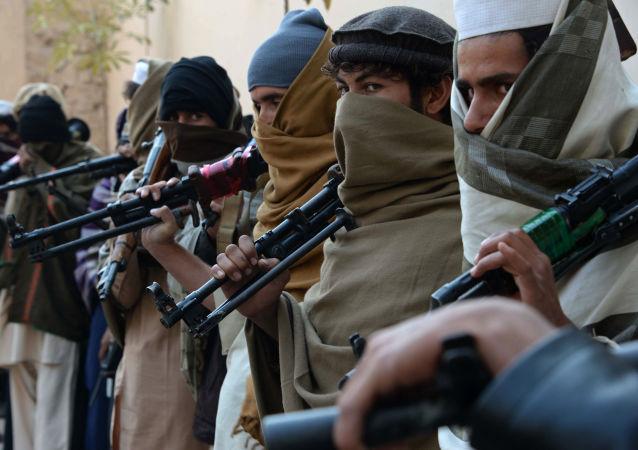 """阿富汗境内的""""伊斯兰国""""武装分子已超过万人"""