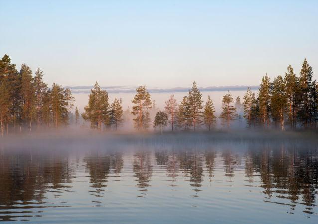 俄罗斯卡累利阿企业今年将向中国供应150万美元的水产品