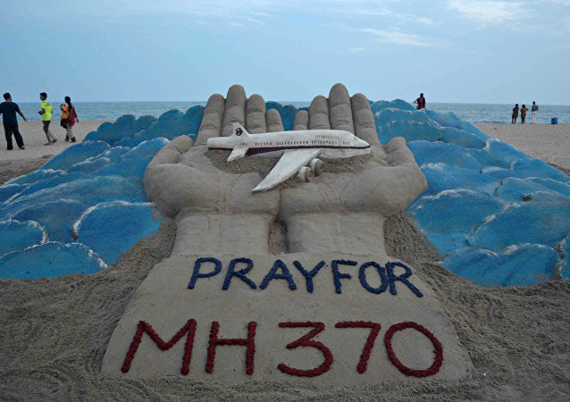 專家:MH370失事或因一名飛行員蓄意所為