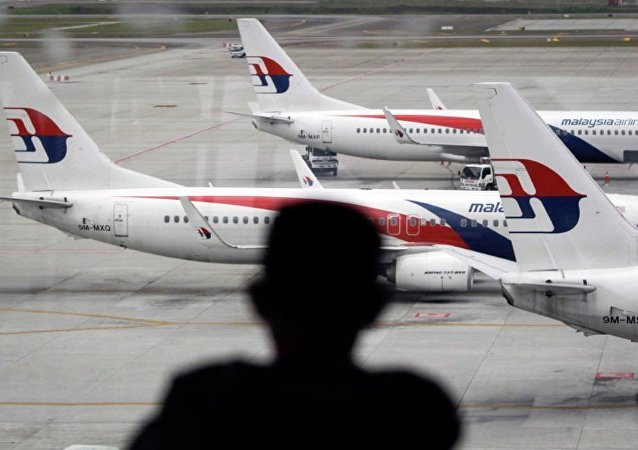 澳交通部長:坦桑尼亞發現的機翼碎片很有可能屬於馬航MH370