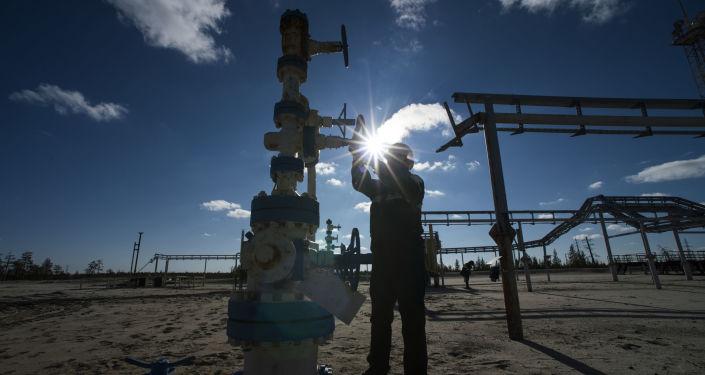 俄能源部:俄羅斯油氣資源至少還可以使用40至50年