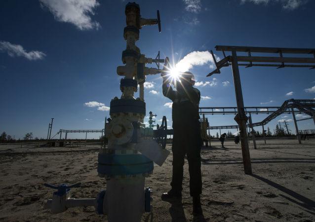 """俄能源部:估计独立企业欲经""""西伯利亚力量""""出口天然气150-300亿立方米"""