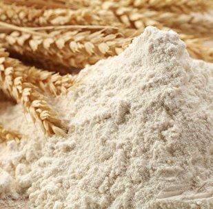 俄阿爾泰邊疆區企業2017年對華麵粉出口增加20%