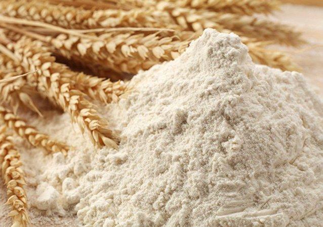 俄阿尔泰边疆区企业2017年对华面粉出口增加20%