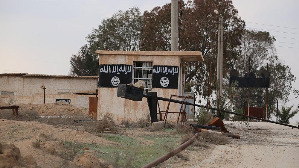 """""""伊斯兰国""""武装分子撤离后的叙利亚沙达迪市"""