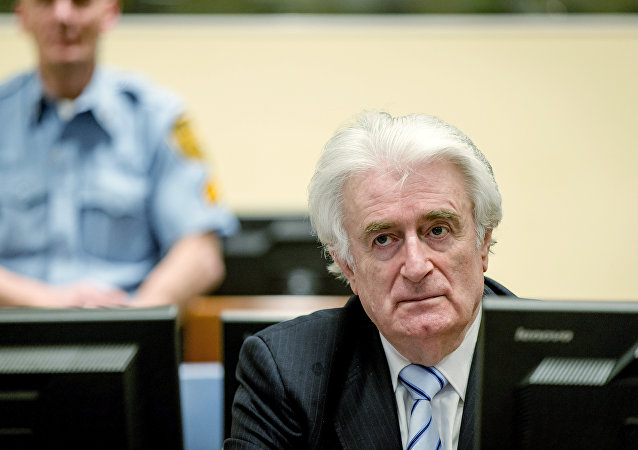 法國議員談卡拉季奇獲刑:可惜只懲罰了交戰一方