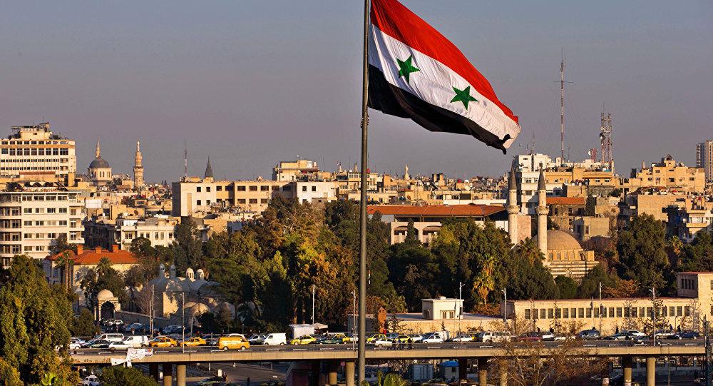 阿萨德认为叙利亚国家太小联邦制不适用